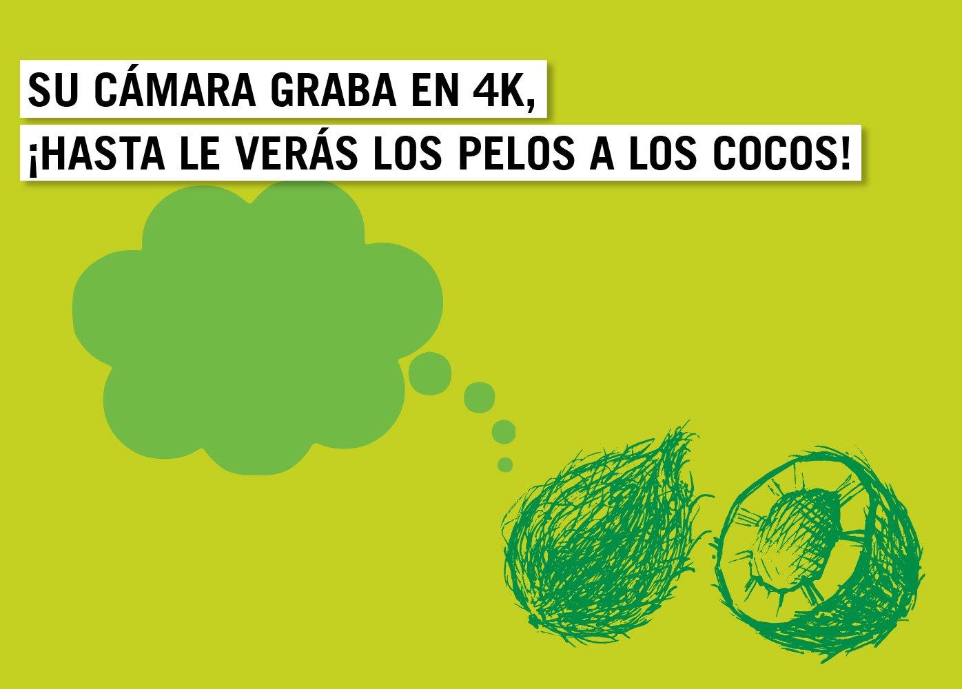 Frase_Cocos